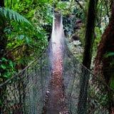 Pont d'oscillation de marche dans le passage couvert de Taranaki Photos stock