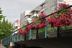 Pont dans Ruoholahti avec les fleurs roses dans l'avant Photos stock