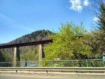 Pont dans Yaremche Photos libres de droits