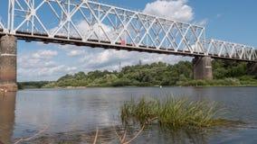 Pont de chemin de fer au-dessus de la rivière en été banque de vidéos