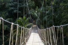 Pont de corde en bois Photographie stock