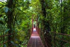 Pont de corde - nuage Forest Reserve de Monteverde Photos stock