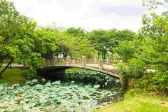 Pont de courbure Image libre de droits