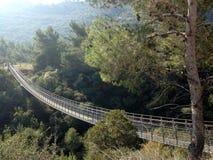 Pont de enjambement étroit au-dessus d'une forêt Image libre de droits