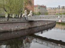 Pont de Lviny (lions), St Petersburg Image stock