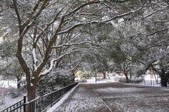 Pont de marche dans la neige Images libres de droits