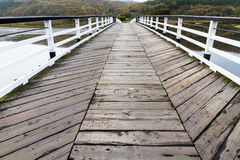 Pont de péage de Penmaenpool, égalisant Images libres de droits