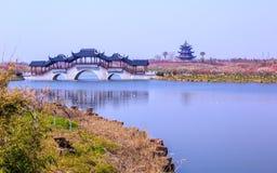 Pont de pagoda et de galerie photo libre de droits