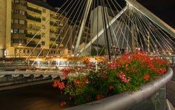 Pont de Paris bridge night view Royalty Free Stock Photography