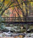 Pont de pied au-dessus de courant rocheux dans les montagnes fumeuses photographie stock