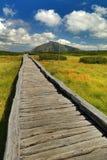 Pont de planche avec la montagne de Snezka Photo stock