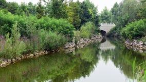 Pont de rivière et de pierre dans le jardin Photo libre de droits