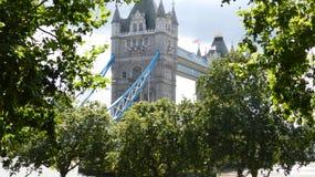 Pont de tour entre les arbres Photographie stock
