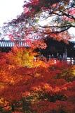 Pont de Tsuten-kyo pendant l'automne, temple Kyoto, Japon de Tofukuji Image stock