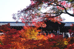 Pont de Tsuten-kyo pendant l'automne, temple Kyoto, Japon de Tofukuji Image libre de droits