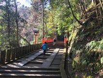 Pont du Japon Images libres de droits