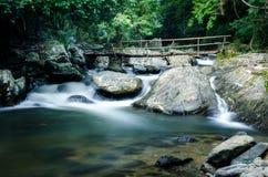 Pont en bambou Photo libre de droits