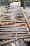 Pont en bambou humide Photographie stock