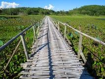 Pont en bambou par le lac luxuriant de lotus avec le fond a de montagne Photo stock