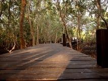 Pont en bois à la lanière de fourche de thung, Rayong, Thaïlande photos stock