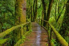 Pont en bois Photo libre de droits