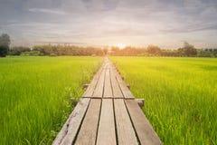 Pont en bois 100 années Photos libres de droits