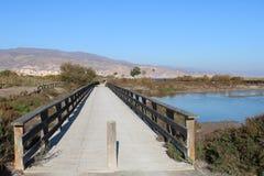 Pont en bois au-dessus de petit magma photographie stock libre de droits