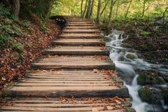 Pont en bois au-dessus des lacs Plitvice et des cascades - lac Plitvice image libre de droits