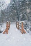 Pont en bois avec la neige Photographie stock libre de droits