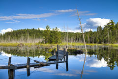Pont en bois cassé sur le lac de forêt Photographie stock libre de droits