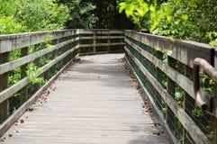 Pont en bois d'itinéraire aménagé pour amateurs de la nature dans la forêt Photographie stock libre de droits