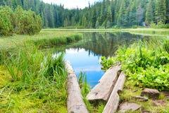 Pont en bois dans le lac bleu Image stock