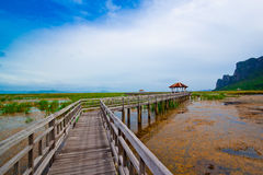 Pont en bois dans le lac sous le ciel bleu Images stock