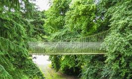 Pont en bois de cabane dans un arbre, en bois et de corde d'Alnwick dans des arbres, jardin d'Alnwick, dans le comté anglais du N Photos stock