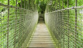 Pont en bois de cabane dans un arbre, en bois et de corde d'Alnwick dans des arbres, jardin d'Alnwick, dans le comté anglais du N Photos libres de droits