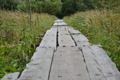 Pont en bois entre l'herbe grande Images libres de droits