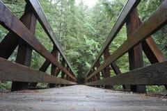 Pont en bois pour des randonneurs Photographie stock