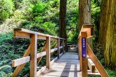 Pont en bois sur la traînée de Dipsea photos libres de droits