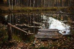 Pont en bois sur le lac image stock