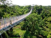 Pont en ciel de Nantou Houtanjing Photos stock