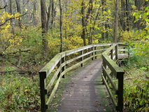 Pont en nature images stock
