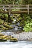 Pont en nature près des automnes de Marymere, parc national olympique Images stock