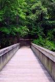 Pont en Noland Trail, actualités de Newport, la Virginie Image libre de droits