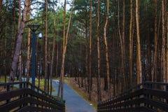 Pont en parc au cours de la journée Ressort Fond Photographie stock