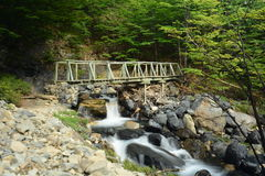 Pont en parc national de Torres del Paine, Chili Photos libres de droits