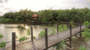 pont en passage couvert dans le coucher du soleil Photo libre de droits