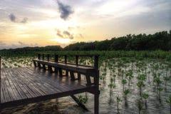 pont en passage couvert sur le coucher du soleil Photos libres de droits