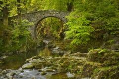 Pont en pierre au-dessus d'une rivière en Irlande du Nord Images stock