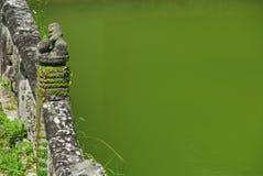 Pont en pierre avec le lion et l'étang vert Images stock