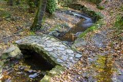 Pont en pierre dans la forêt naturelle la saison d'automne Photographie stock libre de droits
